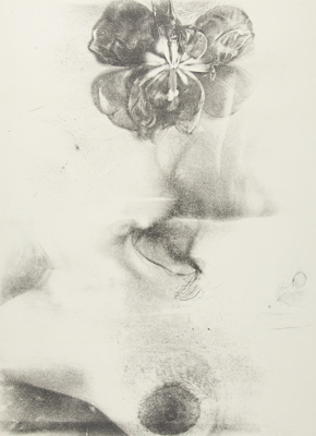 Untitled [Water lily and breast]; Lyons, Joan; 1974; 1975:0006:0007