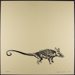Untitled [Long tailed rodent]; Schnell, John; 1970; 1972:0096:0042