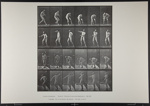 Picking up a ball and throwing it. [M. 302]; Da Capo Press; Muybridge, Eadweard; 1887; 1972:0288:0074