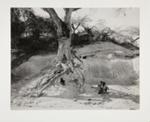 Roadside Scene Near Gonaives; Rosenblum, Walter; 1959; 1973:0026:0001