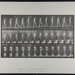 Ascending incline, angle 1 in 4. [M. 74]; Da Capo Press; Muybridge, Eadweard; 1887; 1972:0288:0022