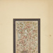 Untitled [Birch tree]; Thompson, Fred; ca. 1900s; 1986:0022:0006