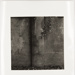 Untitled [Stone wall with ivy]; Cooper, John; ca. 1983; 1983:0016:0001