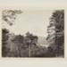 Castle Bernard Park Baudon; Currey, F.E.; 1869; 1982:0019:0001