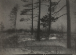 Untitled [Trees in a field]; Bland, William; undated; 1974:0056:0009
