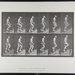 Ascending stairs. [M. 91]; Da Capo Press; Muybridge, Eadweard; 1887; 1972:0288:0027
