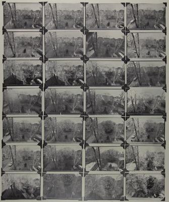 Spring Piece 1976; Lyons, Joan; 1976; 1987:0090:0002