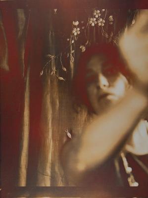 Presences [Self-portrait]; Lyons, Joan; 1980; 1981:0004:0011