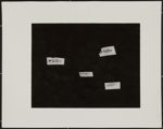 Untitled [Four fish]; Connor, Linda; 1971; 1979:0034:0002