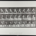 Base-ball; batting. [M. 276]; Da Capo Press; Muybridge, Eadweard; 1887; 1972:0288:0053