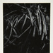 [Untitled, abstraction of a natural form]; Wells, Alice; 1962; 1972:0287:0100