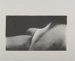 Untitled [Curved abstract forms]; Edelstein, David; undated; 1978:0144:0001
