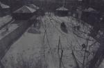 Untitled [Backyard]; Lyons, Joan; 1973; 1978:0049:0001