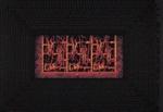 Untitled [A lace curtain...]; Brett, David; Freeman, Barbara; 2003; 2009:0021:0008