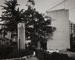 Camphor Tree, A Gate-Post; Tsuchida, Hiromi; 1983; 1993:0005:0022