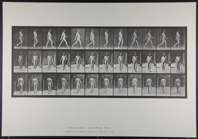 Walking. [M. 11]; Da Copa Press; Muybridge, Eadweard; 1887; 1972:0288:0008