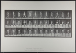 Walking. [M. 11]; Da Copa Press; Muybridge, Eadweard; 1887; 1972:0288:0008