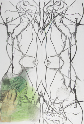 Untitled [Vines and leaves]; Lyons, Joan; ca. 1970s; 1987:0089:0016