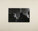 Untitled [Nude in landscape]; Mautner, Robert; 1973; 2011:0016:0010
