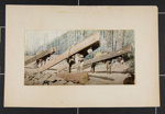A Lumber Pack; Detroit Photographic Co.; ca. 1898-1905; 1981:0065:0007
