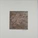 Untitled [Prairie grass]; Krabill, Al; 1974; 1978:0129:0014