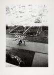 Kamaitachi #7; Hosoe, Eikoh; 1968; 1987:0049:0008