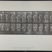 Cricket; batting; back cut. [M. 293]; Muybridge, Eadweard; 1887; 1972:0288:0070
