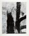 San Luis Potosi, Mexico 23 ; Siskind, Aaron; 1961; 1971:0191:0001