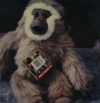 Untitled [Stuffed animal]; Prez, James; ca. mid 2000s; 2008:0007:0058