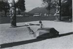 Untitled [Totem poles]; Dane, Bill; ca. 1976; 2011:0014:0004