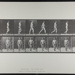 Walking. [M. 5]; Da Copa Press; Muybridge, Eadweard; 1887; 1972:0288:0004