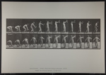 Lifting 50-lb. dumb-bell at arm's length. [M. 326]; Da Capo Press; Muybridge, Eadweard; 1887; 1972:0288:0086