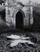 Untitled [Fitch]; Pond, David; undated; 2000:0116:0007