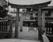 Torii (A Gateway of Shinto Shrine); Tsuchida, Hiromi; 1983; 1993:0005:0020