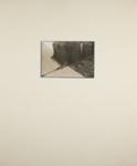 Untitled [Ivy]; Leighton, Ron; 1973; 2011:0016:0011