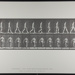 Walking, carrying 50-lb. dumb-bell in right hand. [M. 28]; Da Capo Press; Muybridge, Eadweard; 1887; 1972:0288:0011