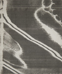Foot; Sheridan, Sonia Landy; 1973; 1981:0117:0027