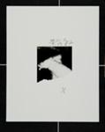 [untitled] Minigraph ; Hosoe, Eikoh; 1982; 1987:0048:0002