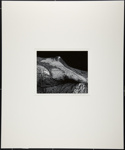 [Still life with rock]; Cosindas, Marie; ca. 1960; 1971:0028:0001