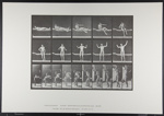Arising from couch and stretching arms. [M. 260]; Da Capo Press; Muybridge, Eadweard; 1887; 1972:0288:0049