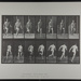 Running. [M. 66]; Da Capo Press; Muybridge, Eadweard; 1887; 1972:0288:0018