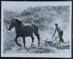 The Right to Work; Burri, Rene; 1962; 1984:0026:0004