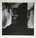 [Untitled, Abstraction of wood structure]; Wells, Alice; 1962; 1972:0287:0162