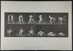 Wrestling; Graeco-Roman. [M. 347]; Da Capo Press; Muybridge, Eadweard; 1887; 1972:0288:0093