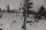 Winter 1978; Hunter, Frank; 1978; 1981:0040:0005