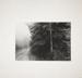 Untitled [Dirt road]; Wood, John; undated; 1975:0014:0001