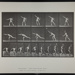 Heaving a 20-lb. rock. [M. 313]; Da Capo Press; Muybridge, Eadweard; 1887; 1972:0288:0081