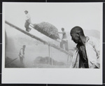 Harvest in China; Riboud, Marc; 1957; 1984:0035:0003