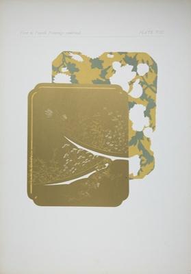 Plate VIII; Audsley, George; 1883; 1978:0125:0009