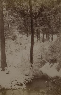 Frosty; Stanton, Henry; 1892; 1982:0015:0008